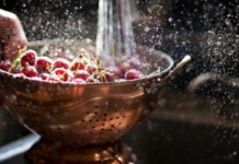 - www.gastronomiaycia.com